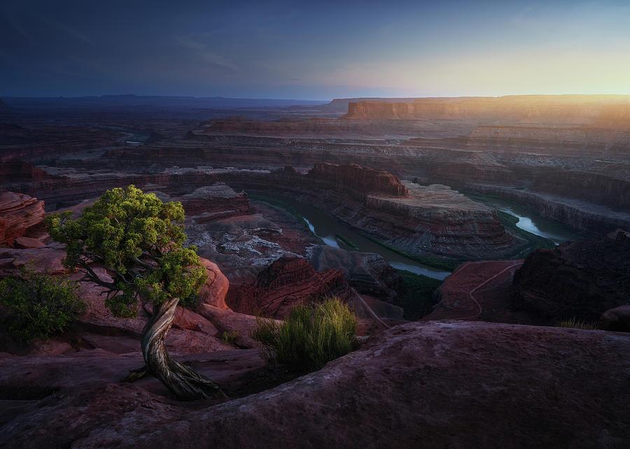 Utah Photograph - Deadhorse Land by Juan Pablo De