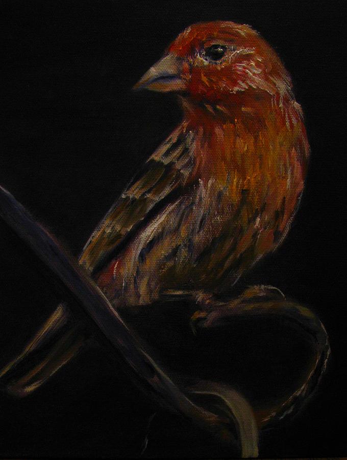 Bird Painting - Deans Bird by Sherry Robinson
