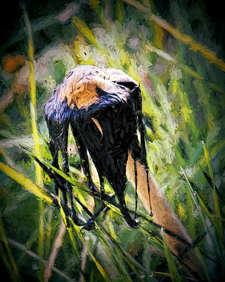Death of a Mushrrom by Tracie Kaska