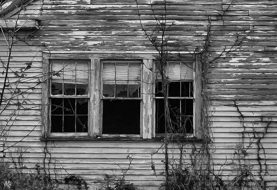 Abandoned Photograph - Decay by Hazel Billingsley