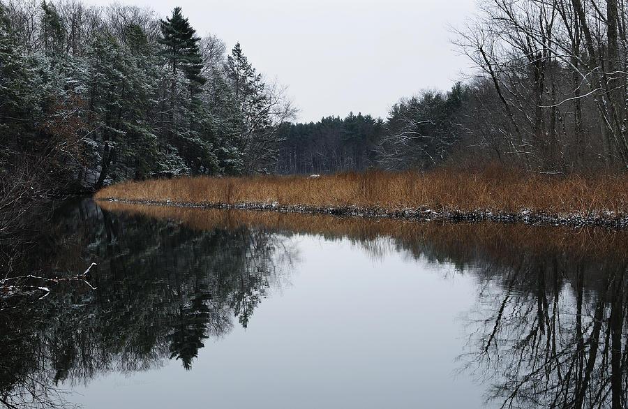 Trees Photograph - December Landscape by Luke Moore