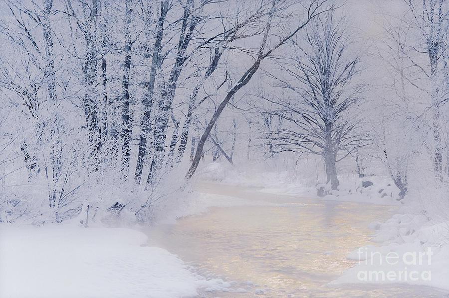 Winter Photograph - December Riverscape by Alan L Graham