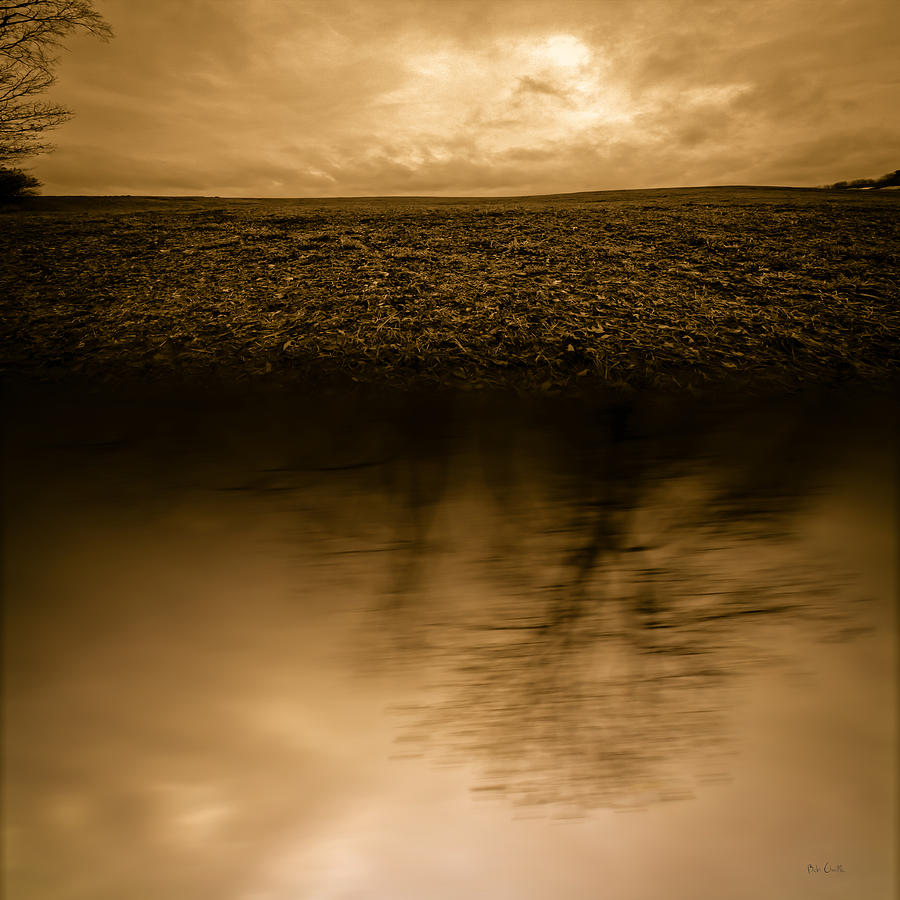 Abstract Surreal Photograph - December Sky by Bob Orsillo