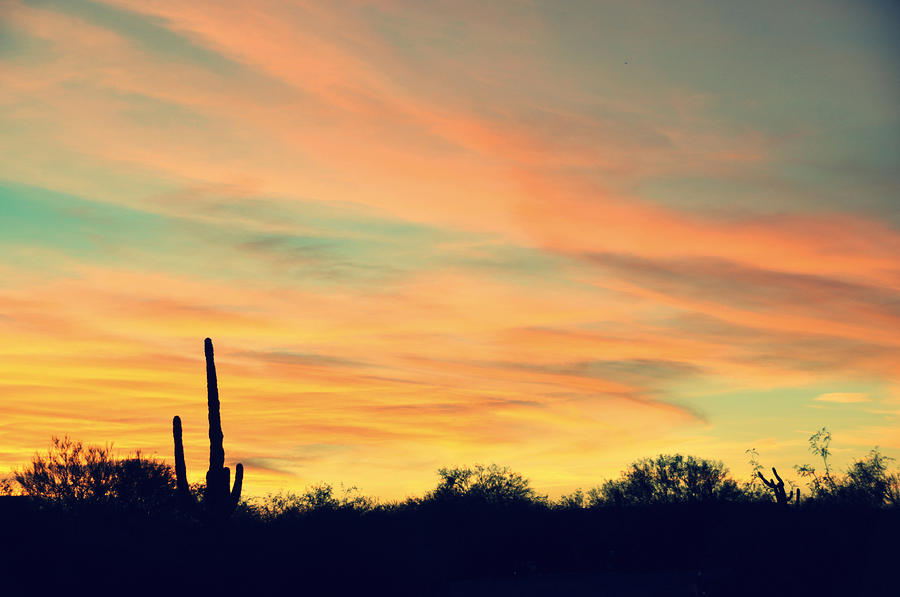 Sunset Photograph - December Sunset Arizona Desert by Jon Van Gilder