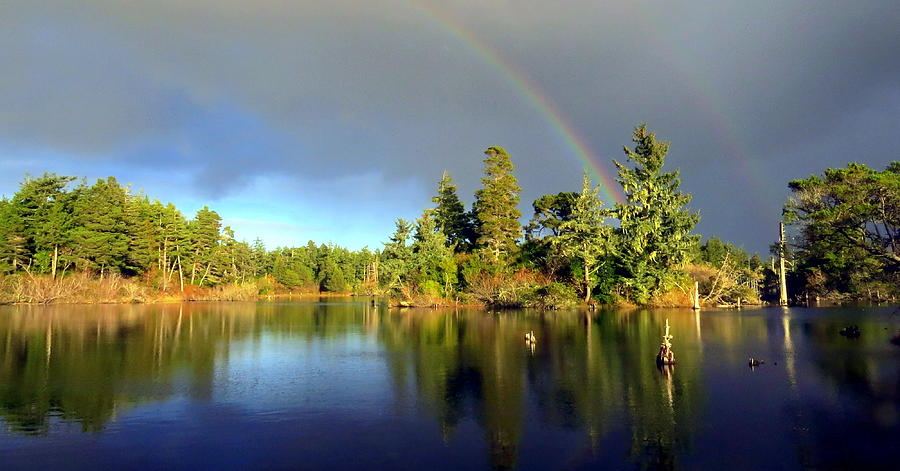Rainbow Photograph - Decembers Double Rainbow by Kristal Talbot