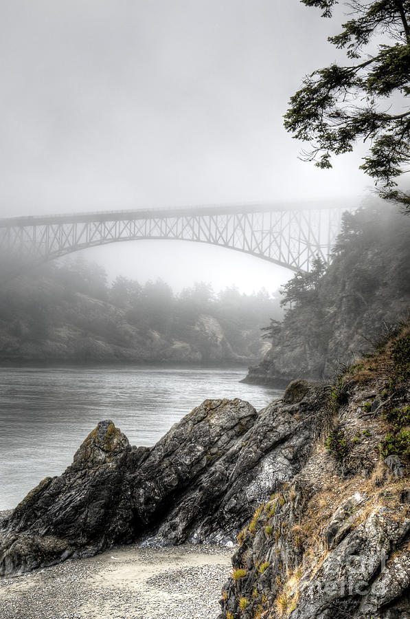 Deception Pass Bridge by Sarah Schroder