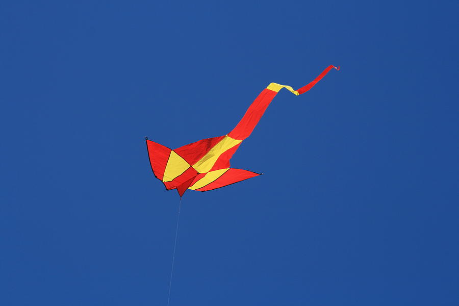 Blue Photograph - Deep Blue Sky And Kite by Phoenix De Vries