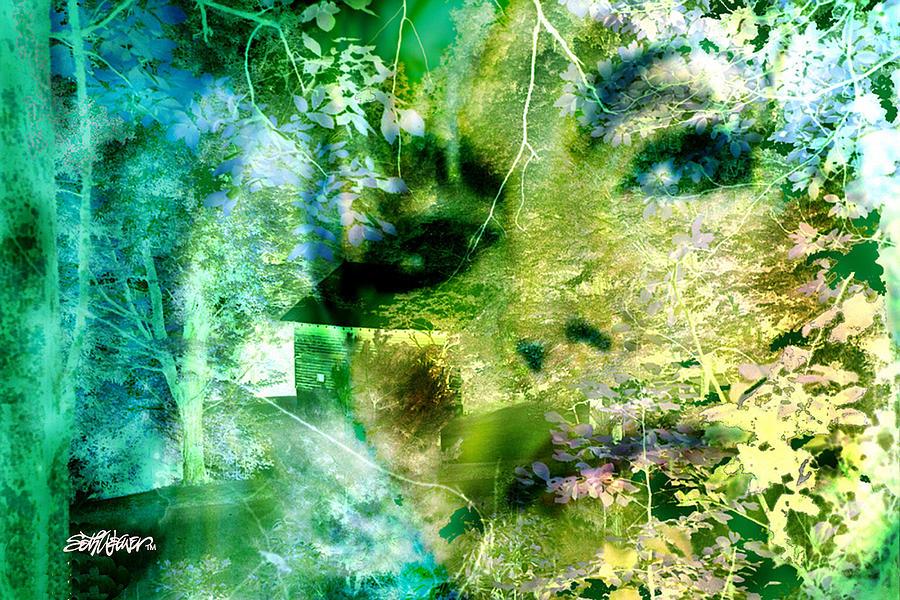 Melancholy Digital Art - Deep Woods Wanderings by Seth Weaver