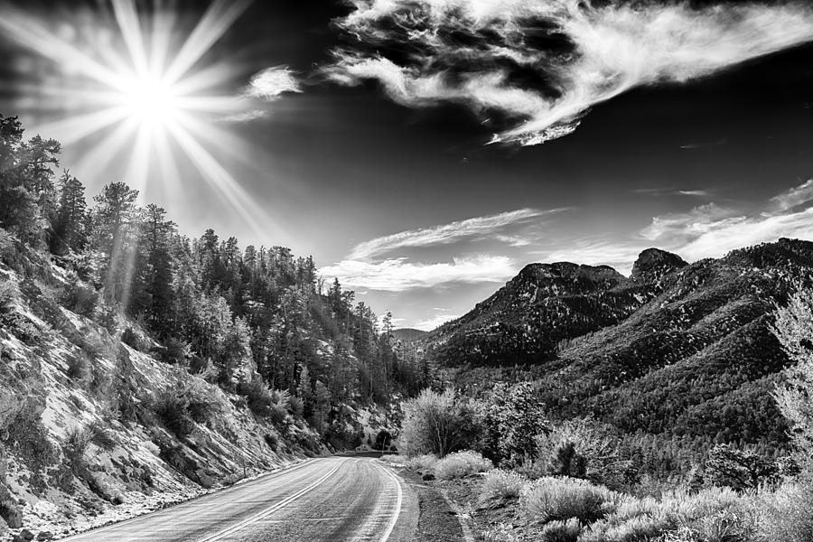 Nature Photograph - Deer Creek Road by Howard Salmon