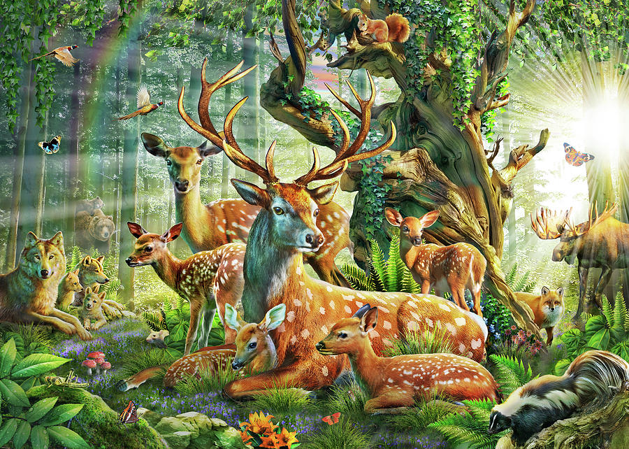 Deer Family In The Forest Drawing By Mgl Meiklejohn