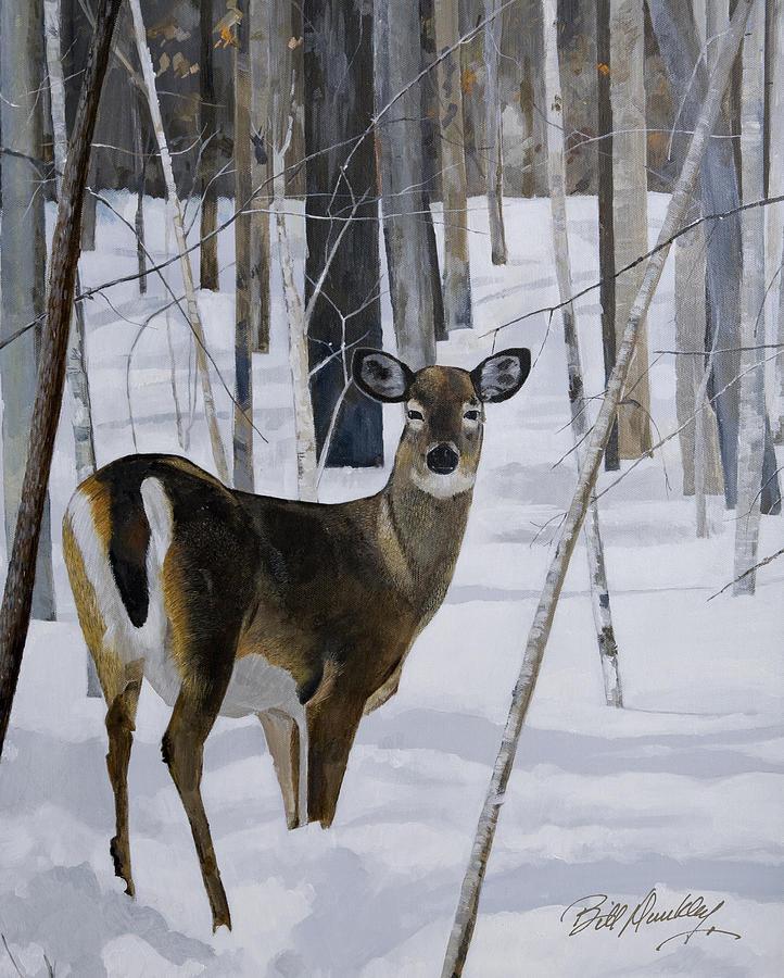 Deer Painting - Deer In The Snow by Bill Dunkley