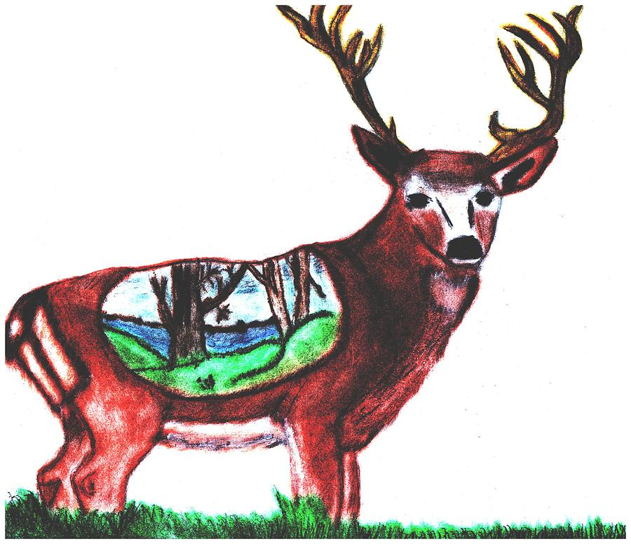 Deer Drawing - Deer World by Shaunna Juuti