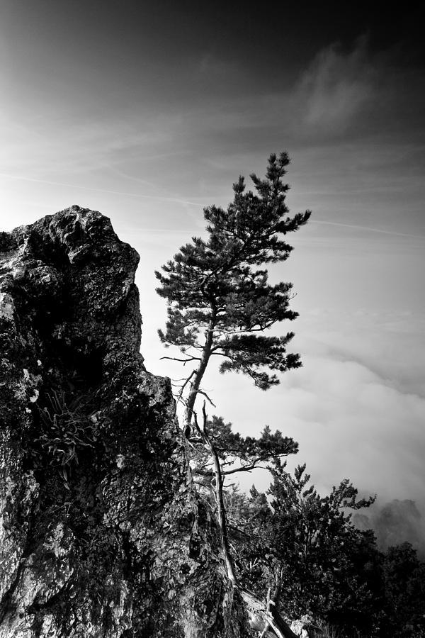 Landscape Photograph - Defiant by Davorin Mance