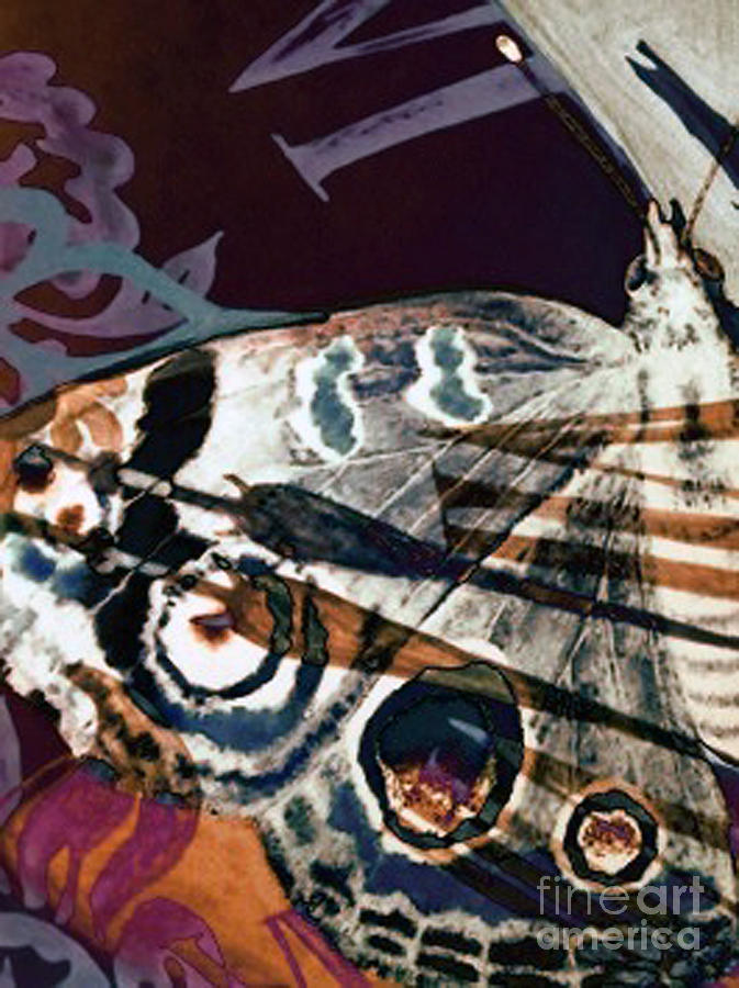 Butterfly Painting - Defined Existence by Carole-Ann Ricketts