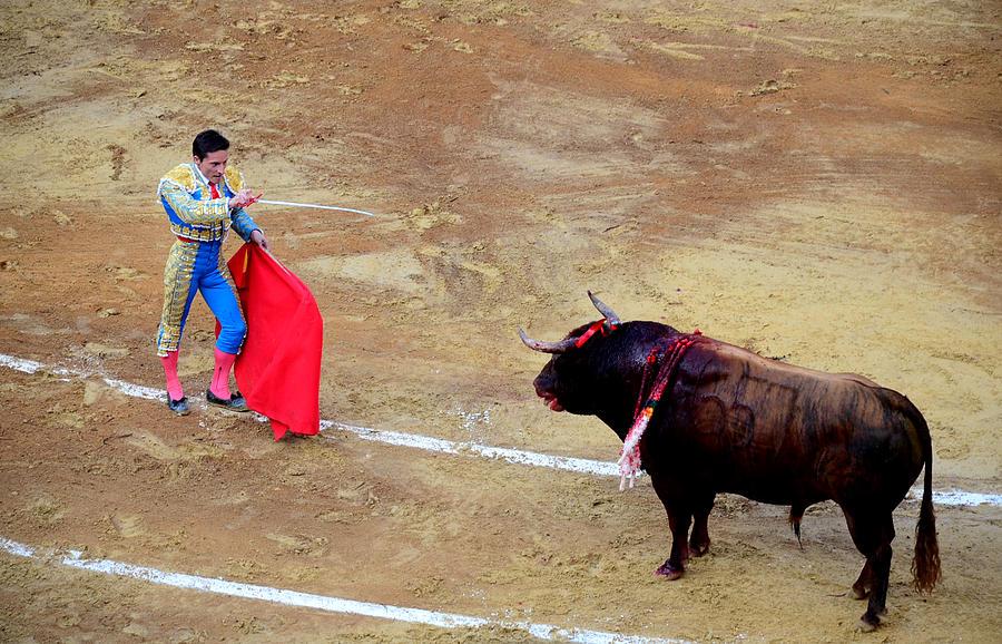 Bullfighter Photograph - Defying Death by Laura Jimenez