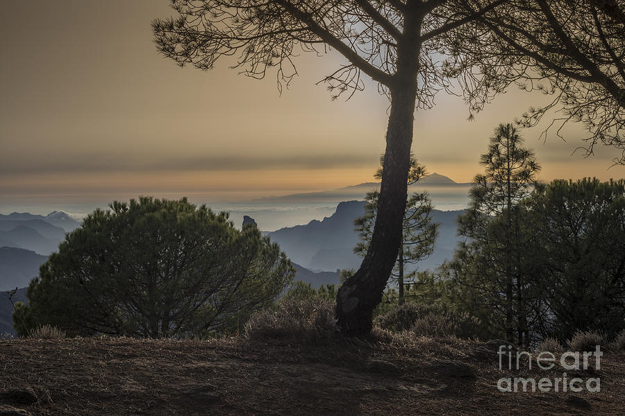 Gran Canaria Photograph - Degollada De Becerra 1 by Michael David Murphy