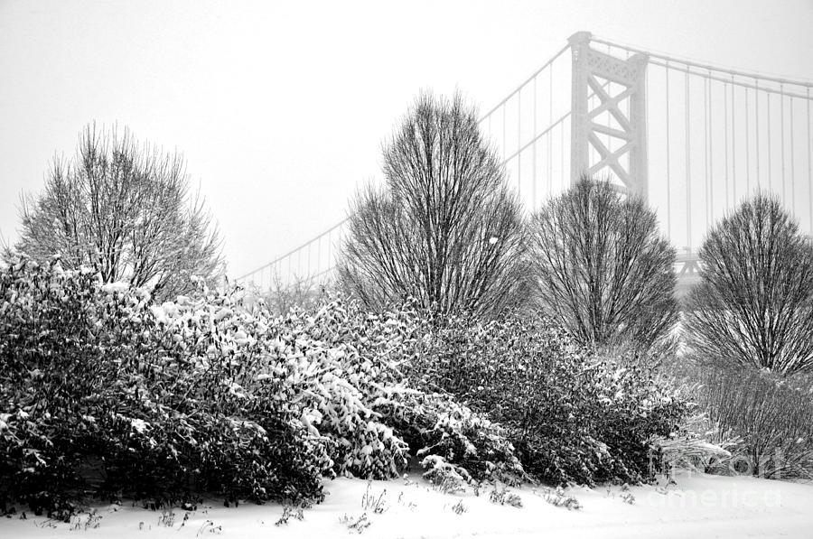 Delaware Avenue Photograph