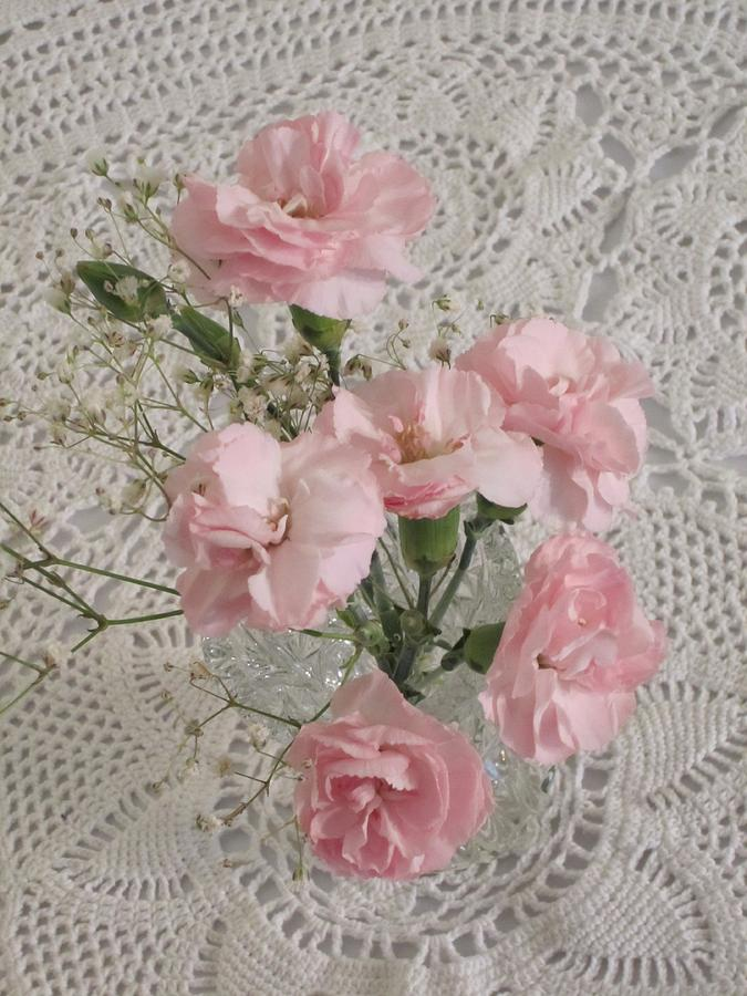 Pink Flowers Photograph - Delicate Pink Flowers by Good Taste Art