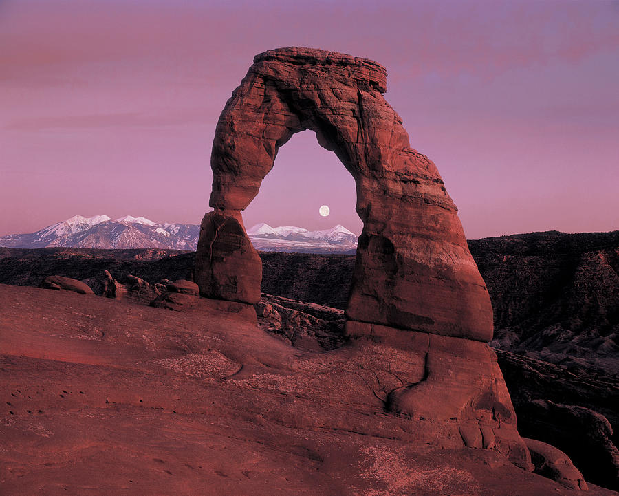 Delicate Arch Photograph - Delicate Arch by Leland D Howard