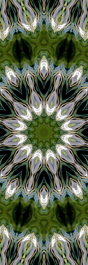 Mandala Photograph - Delight 12 by Lisa Lipsett