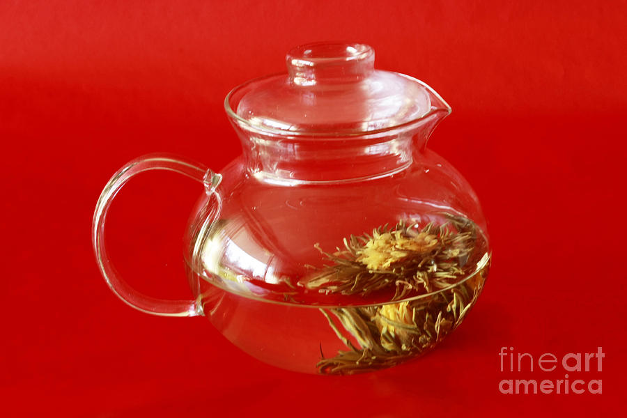 Delightful Blooming Tea Photograph by Inspired Nature Photography Fine Art Photography