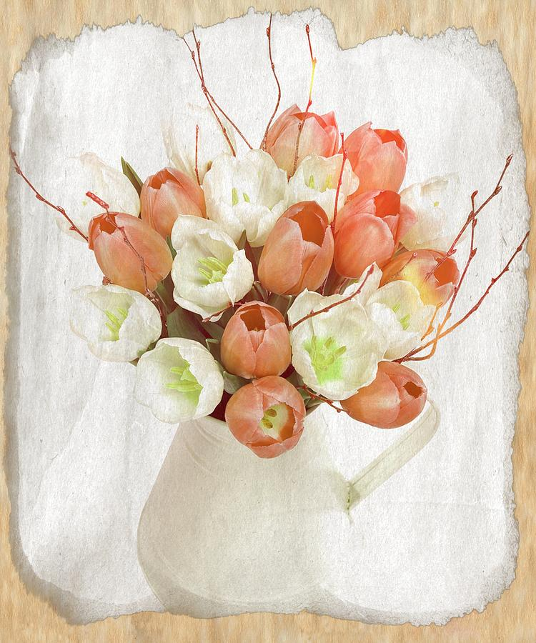 White Tulips Photograph - Deluxe Peach Tulips by Debra  Miller