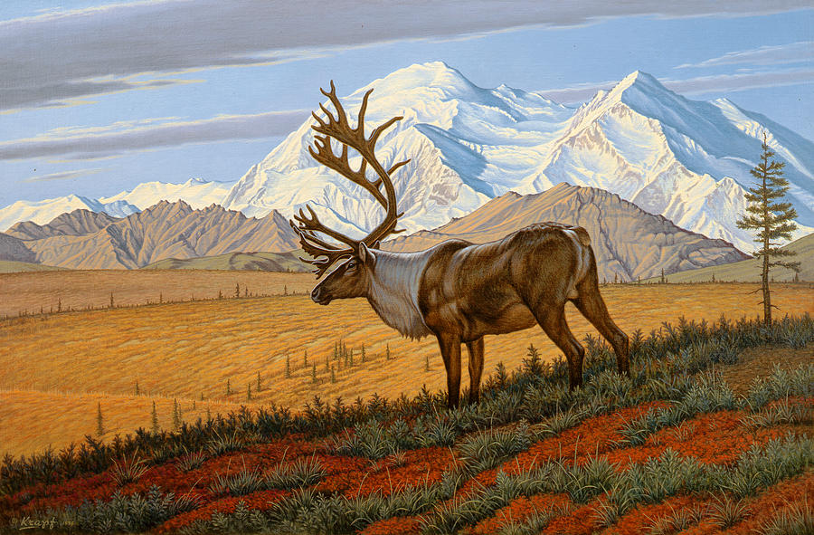 Wildlife Painting - Denali  by Paul Krapf