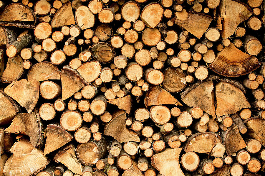 Densely Stacked Wood Photograph by Jtsorrell