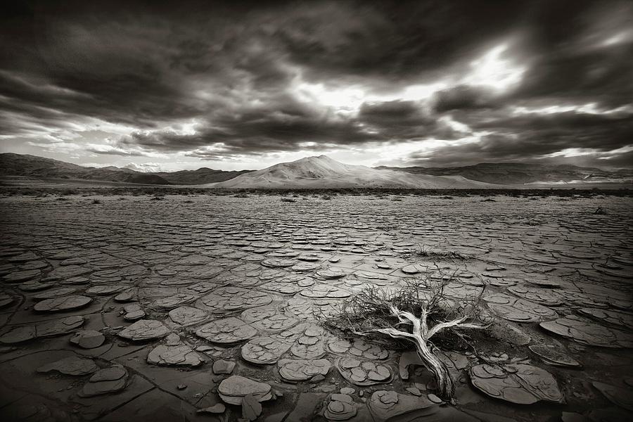 Decay Photograph - Deprivation by Mirko Vecernik
