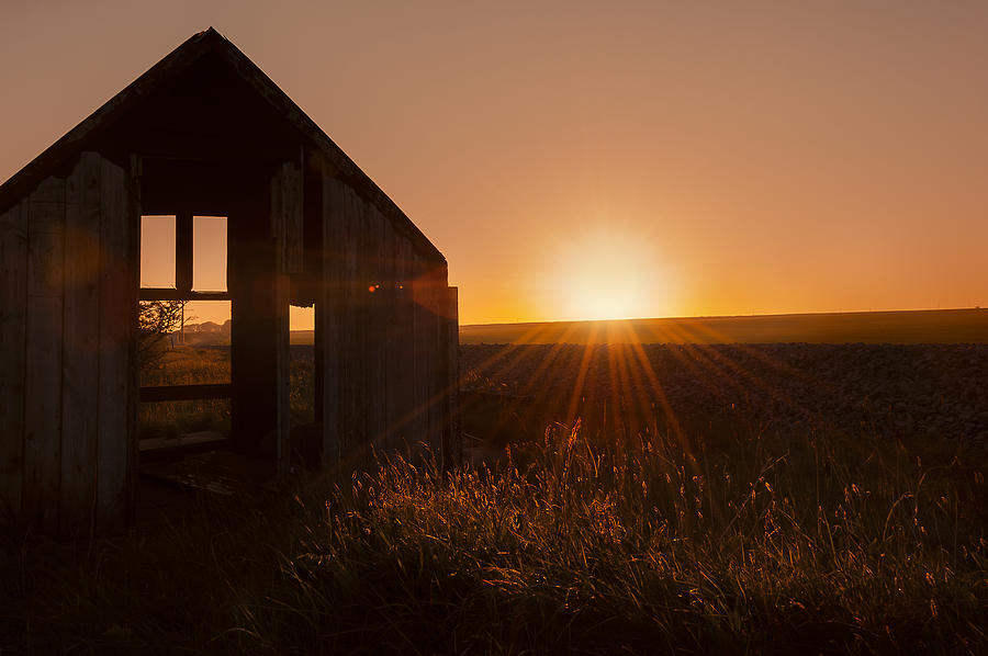 Abandoned Photograph - Derelict Shed by Svetlana Sewell
