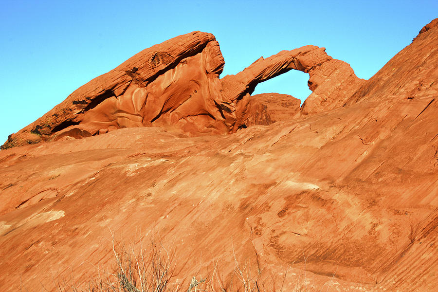Valley Of Fire Photograph - Desert Arch by Laura Palmer