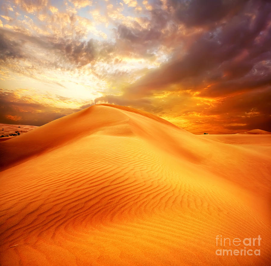 Desert Photograph - Desert Art by Boon Mee