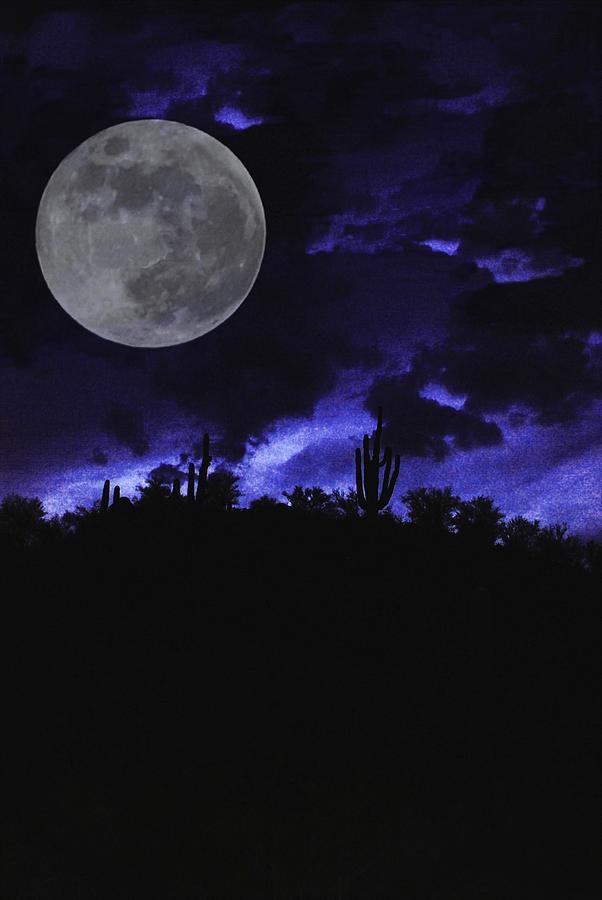 Moonlight Photograph - Desert Blue by Alfredo Martinez