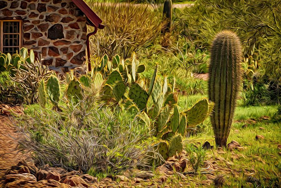 Desert Dream Photograph