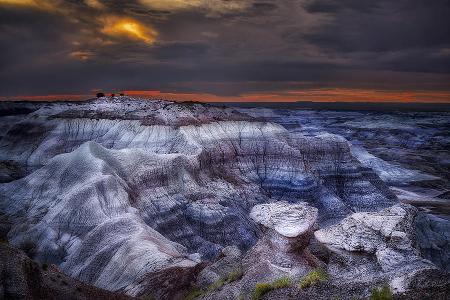 Painted Desert Photograph - Desert Dream by Medicine Tree Studios