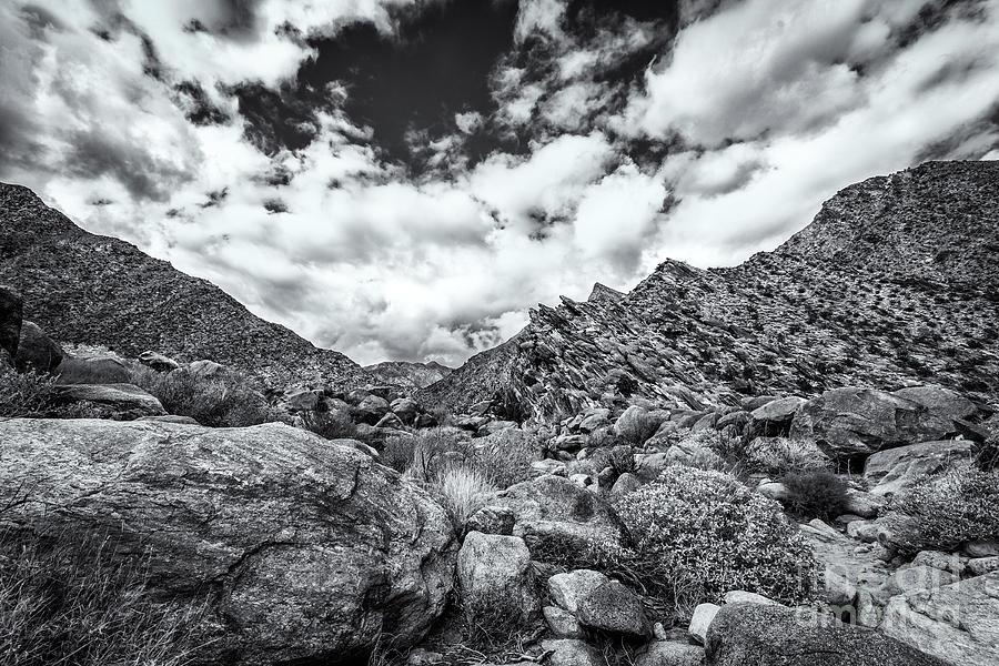 Desert Dreams Photograph