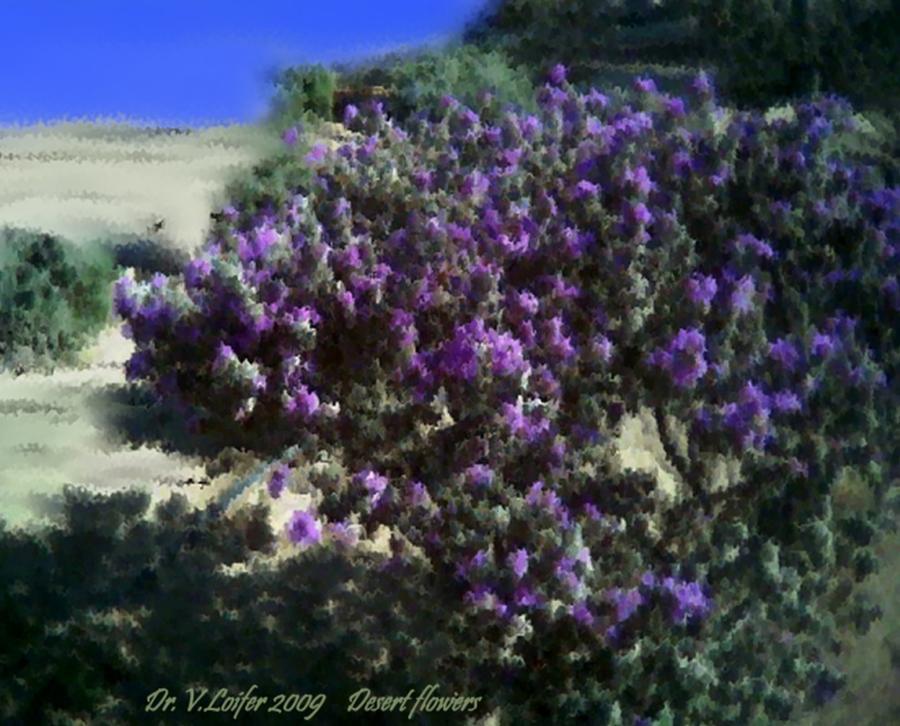 Landscape Digital Art - Desert flowers by Dr Loifer Vladimir