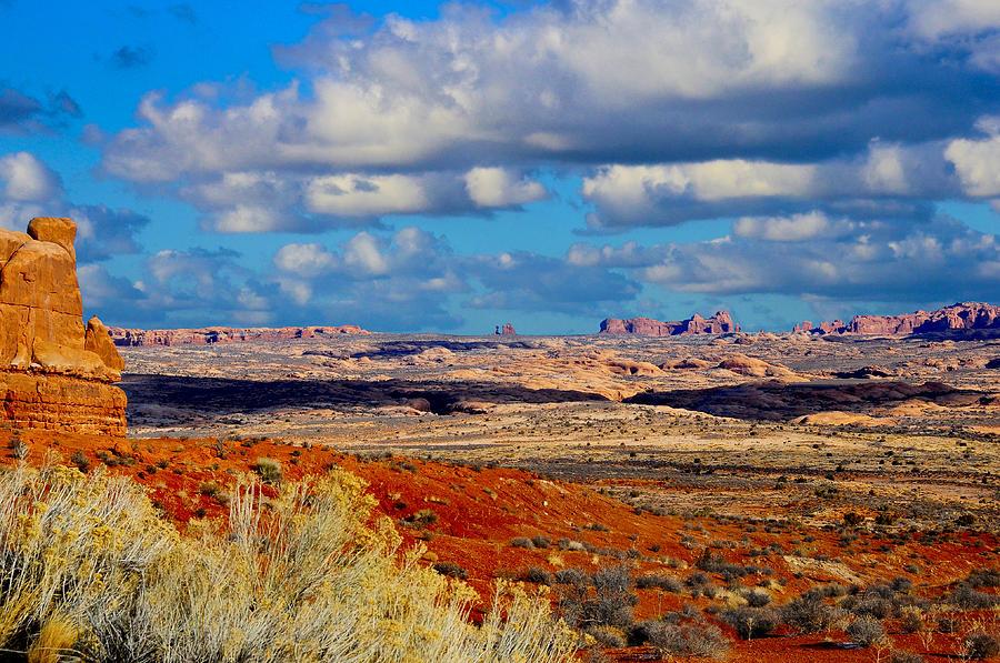 America Photograph - Desert Landscape by Don and Bonnie Fink