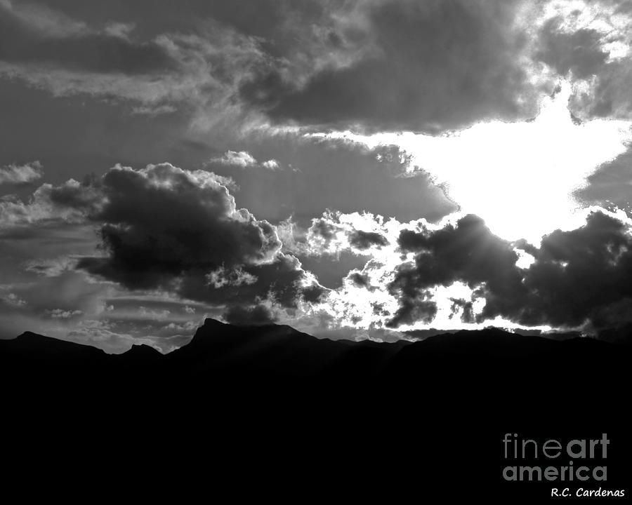 Landscape Photograph - Desert Light by Rebecca Christine Cardenas