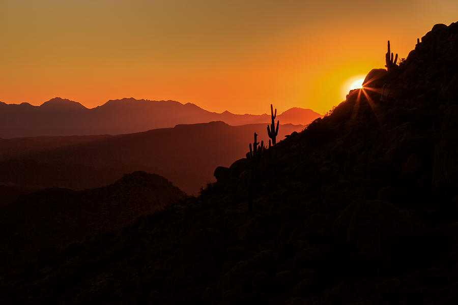 Desert Light Photograph by Rick Furmanek