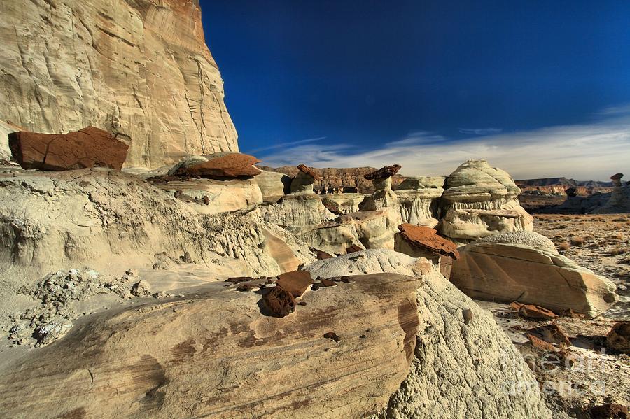 Wahweap Hoodoos Photograph - Desert Litter by Adam Jewell