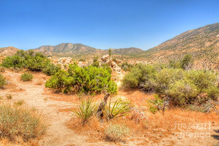 California Photograph - Desert Panorama by Deborah Smolinske