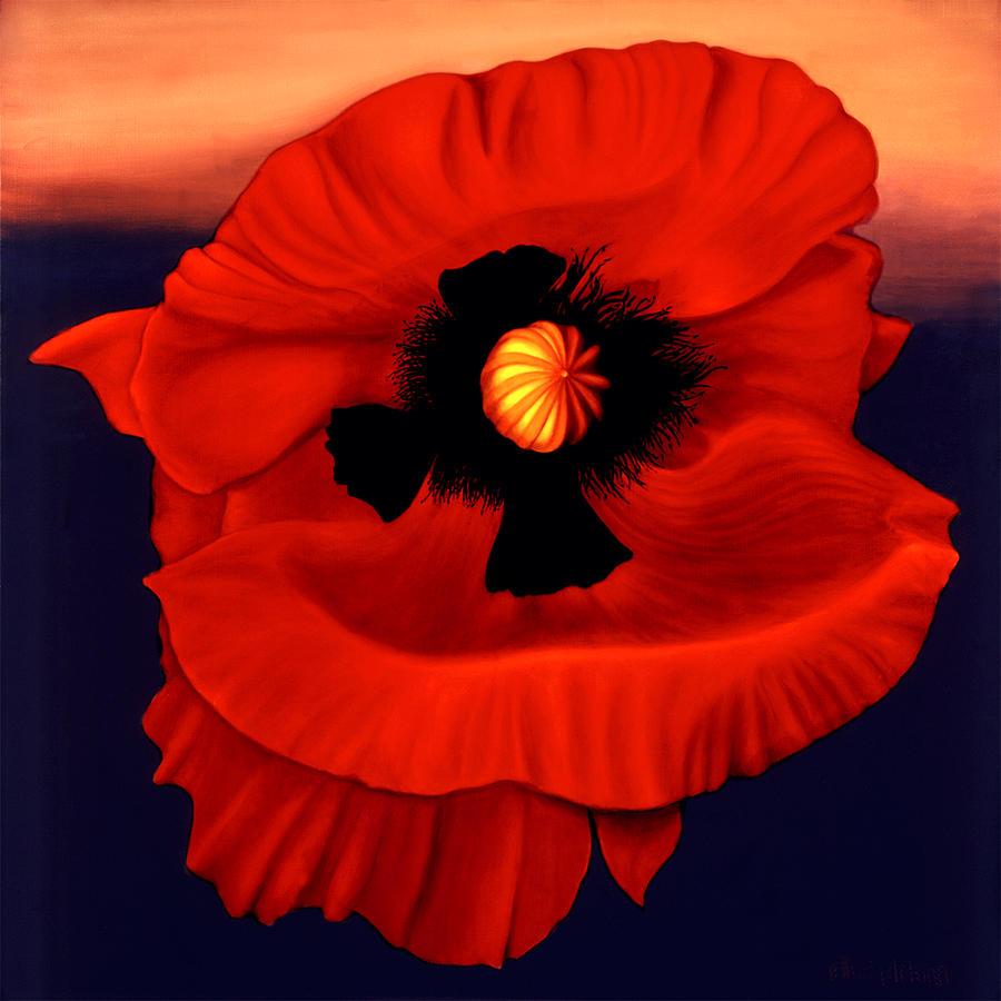 Flowers Painting - Desert Poppy by Anni Adkins