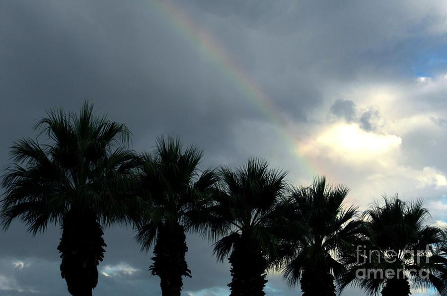 California Photograph - Desert Rainbow by Deborah Smolinske