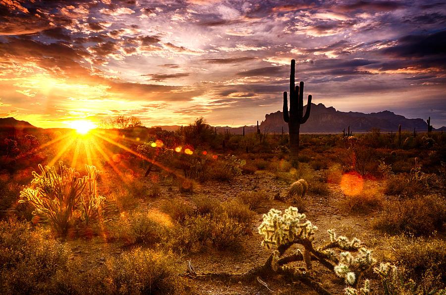 Sunrise Photograph - Desert Sunshine  by Saija  Lehtonen