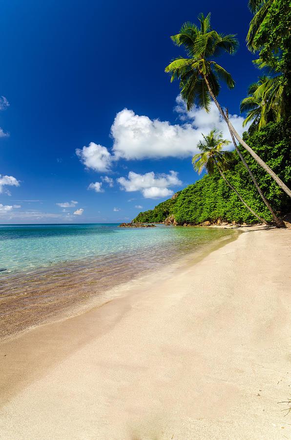 Deserted Beach Photograph