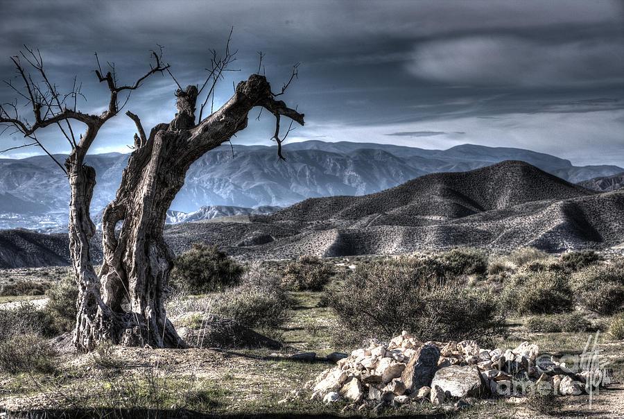 Desierto De Tabernas Photograph