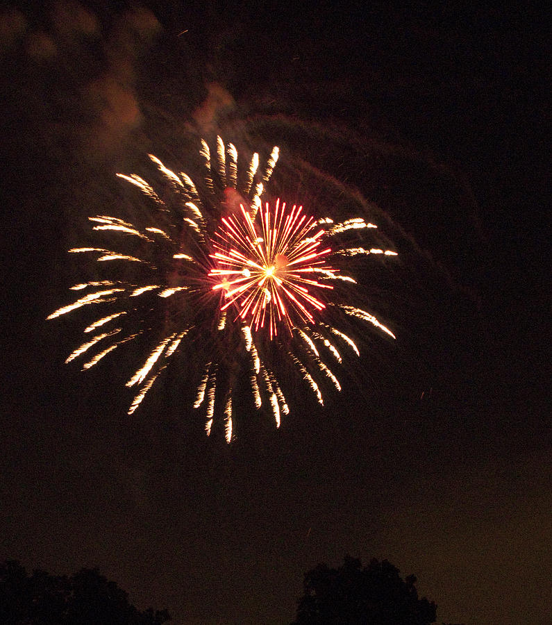 Cities Photograph - Detroit Area Fireworks -1 by Paul Cannon