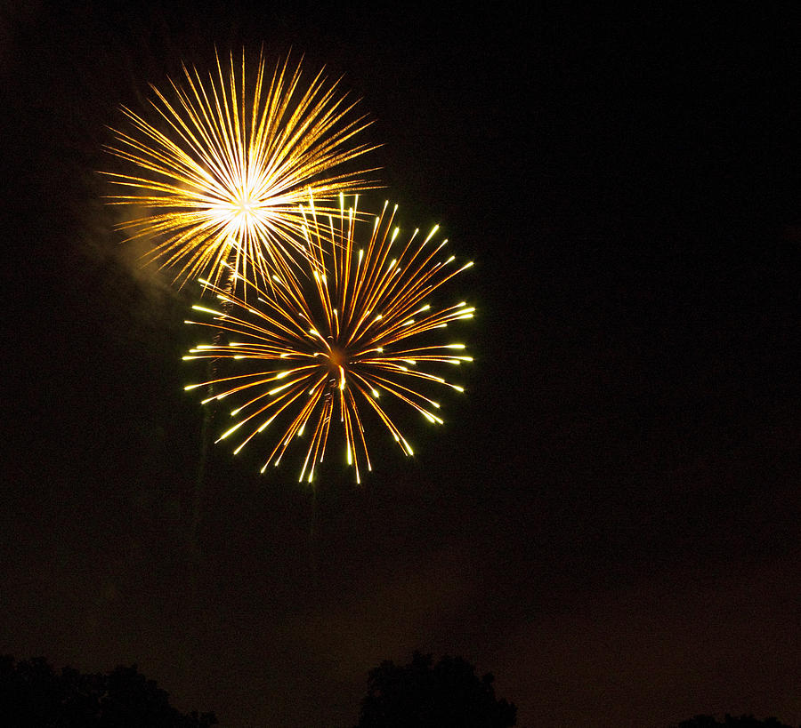 Cities Photograph - Detroit Area Fireworks -3 by Paul Cannon