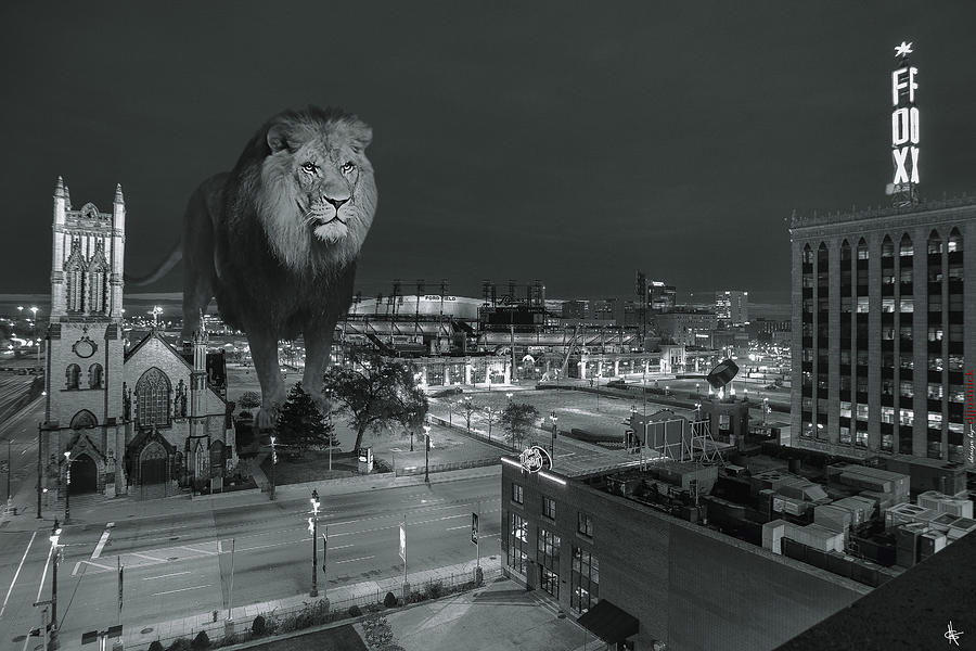 Detroit Lions Photograph by Nicholas  Grunas